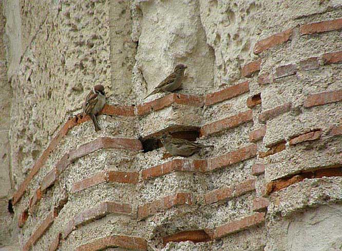 Плинфа. Византийский период.